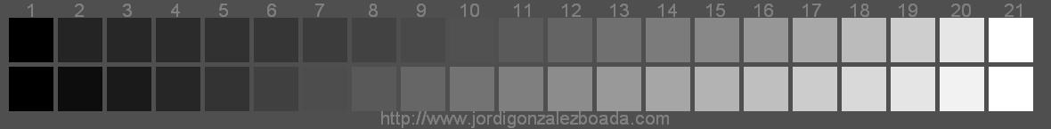 escala de grises para fotografa en byn
